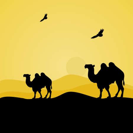 hump: walking camels in the desert,vector illustration