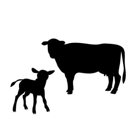 Iconos de vaca y el ternero sobre fondo blanco, ilustración vectorial Ilustración de vector