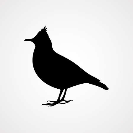 the bird icon on the background,vector illustration