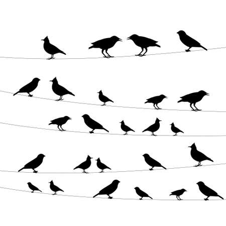 starling: birds on a wire icon,vector illustration