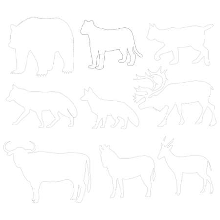 animal picture: animal picture outline