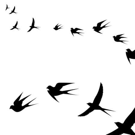 un troupeau d'oiseaux voler, illustration