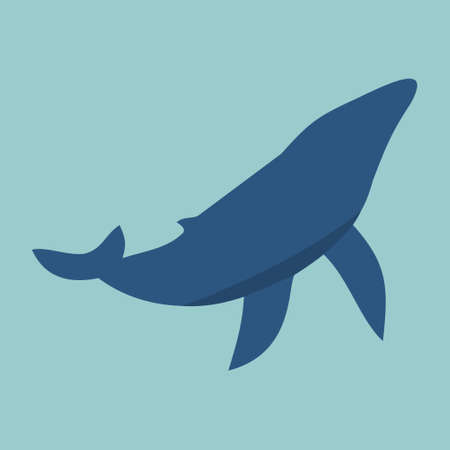 whales: fish, whales illustration