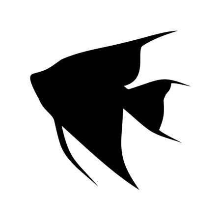 pterophyllum scalare: aquarium fish angelfish illustration Illustration