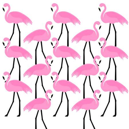 illustration: birds Flamingo,illustration Illustration
