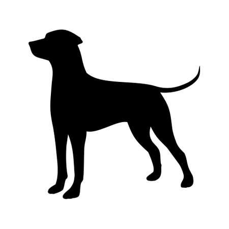 ejemplo del perro de caza
