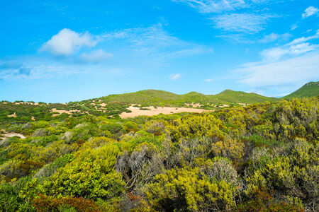 west  coast: Hills behind Scivu beach, Sardinia west coast, Arbus, Italy