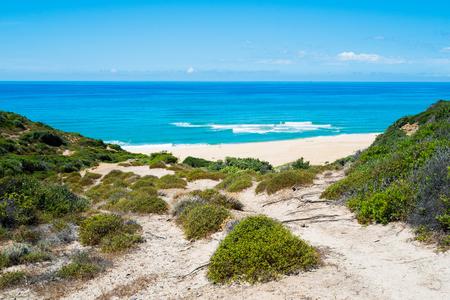 west  coast: Scivu beach in green coast, Sardinia, West coast, Arbus, Italy