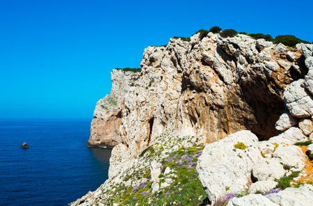 capo: Capo Caccia cliffs close to Alghero, Sardinia, Italy