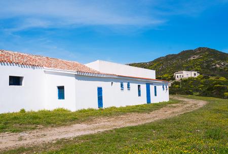 oliva: Old prison in Asinara island in Sardinia, Italy