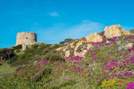 spanish landscapes: Spanish tower in Santa Teresa di Gallura, Sardinia, Italy Stock Photo