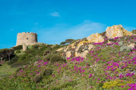 Spanish tower in Santa Teresa di Gallura, Sardinia, Italy Archivio Fotografico