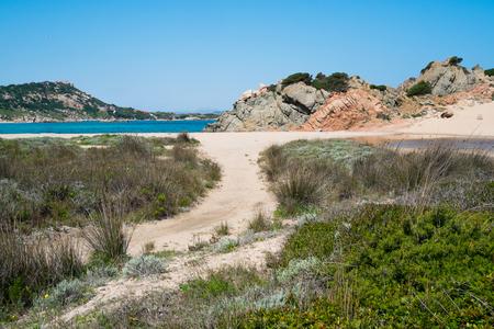 monti: Monti di Rena beach in La Maddalena island, Sardinia, Italy