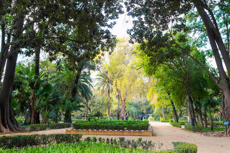andalusia: Maria Luisa park in Seville, Andalusia, Spain