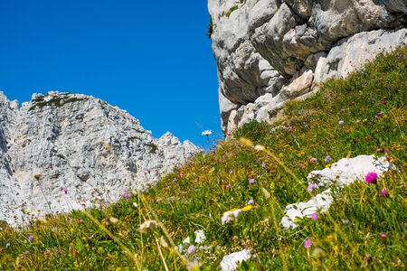 sella: Mountains close to Mount Canin, Sella Nevea, Italy Stock Photo