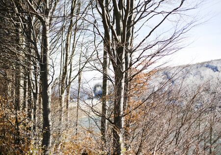 appennino: Tre in winter, passo del Lagastrello, Tuscany, Italy