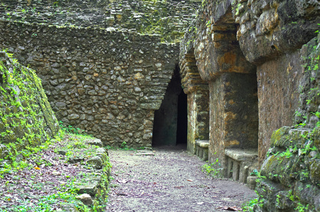 ���archeological site���: Maya pyramid in Yaxchilan archeological site, Chiapas, Mexico