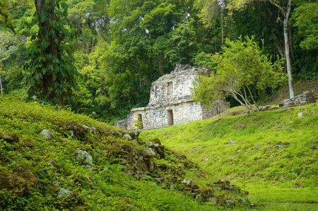 ���archeological site���: Yaxchilan archeological site, Chiapas, Mexico