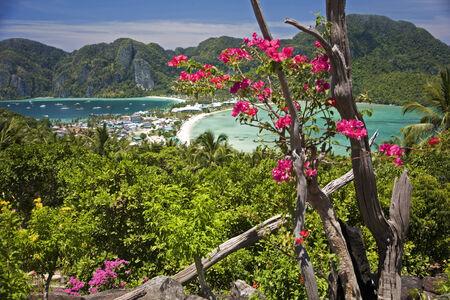 phi phi island: Aerial view of Koh Phi Phi island, Thailand