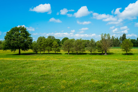 bucolic: Countryside in spring near Angers, France