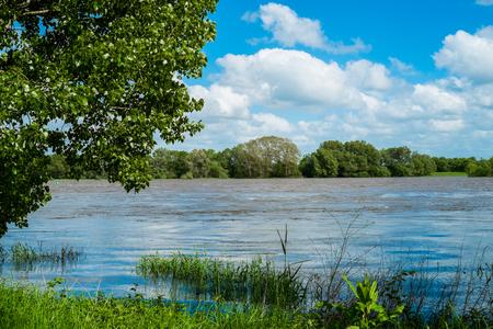 loire: Loire river close to Angers, France