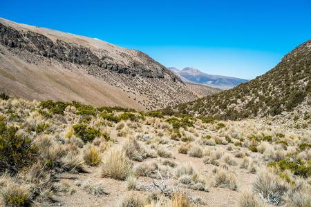 Landscape in Sajama National Park, Bolivia Stock Photo