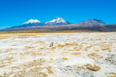 Twin volcanos Parinacota and Pomerape in Sajama National Park, Bolivia