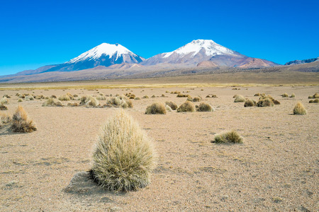 volcanos: Twin volcanos Parinacota and Pomerape in Sajama National Park, Bolivia