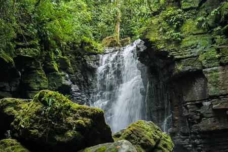 rio amazonas: Cascada y río en Misahuallí, Amazon, Ecuador