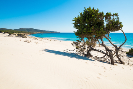 Porto Pino beach in Sant'Anna Arresi, south coast of Sardinia, Italy Stock Photo