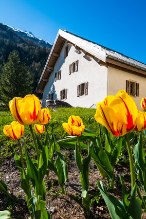 House in Argentiere with flowers, Chamonix Mont Blanc, France Stock Photo