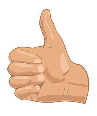 Vector illustration – realistic thumbs up symbol Vector