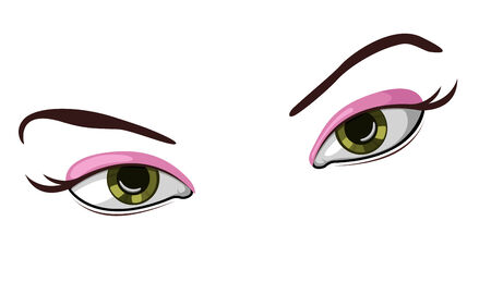 eyebrows: Vector illustration of beautiful female eyes