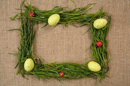 Grass frame with eggs and lady-bugs over canvas background Stock Photo - 4715968
