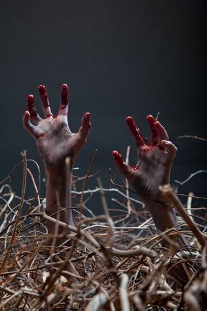 Zombie étirant ses mains rampantes de la tombe, le thème d'Halloween Banque d'images - 15538588