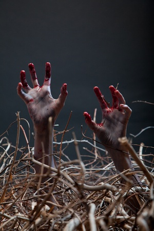 Zombie stretching his creepy hands from the grave, Halloween theme  photo