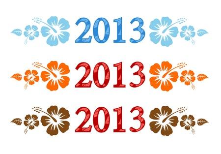 kleurrijke aloha 2013 tekst met hibiscus geïsoleerd op witte achtergrond Stock Illustratie