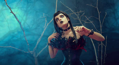 Pretty gothic girl wearing tight feather corset, studio shot with fog and branches  photo