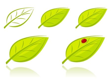set van groene bladeren, eco begrip Stock Illustratie