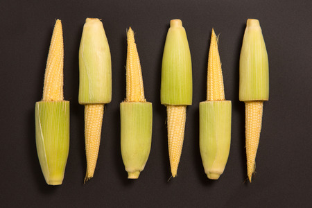 Studio shot of baby corn on black background  photo