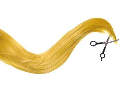 scissors hair: Long golden blonde hair with professional scissors, isolated on white background Stock Photo
