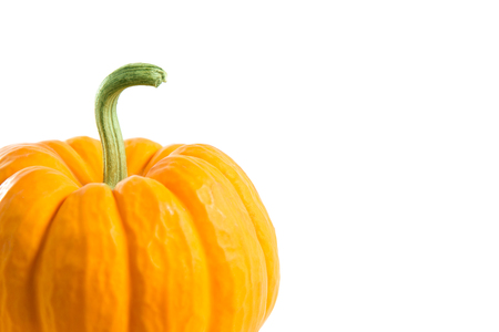 Close-up shot of a small decorative orange pumpkin with copy-space for your text