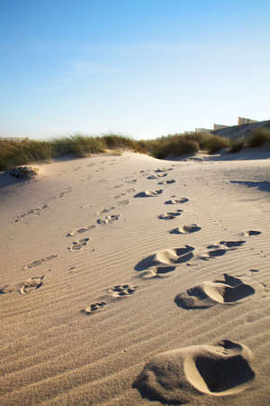 dunes de sable à la plage de Costa Nova, Aveiro, Portugal Banque d'images
