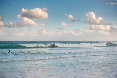 The coastline of white sand and rocks. Caribbean Sea.
