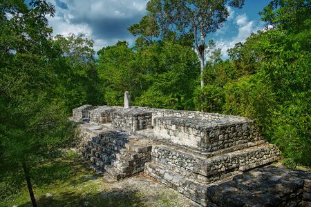 The ruins of the city of Calakmul. Maya Pyramid. Mexico.