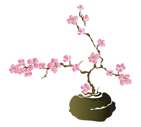 Illustration of a bonsai cherry tree