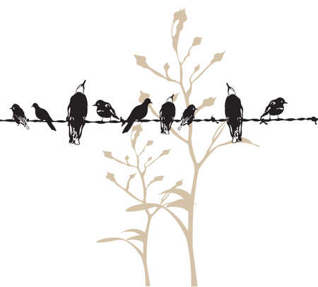 Illustration of birds on a wire Stock Vector - 5091096