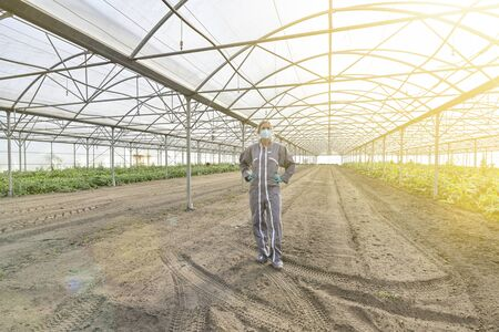 Female farmer standing alone in a greenhouse during the confinement Banque d'images