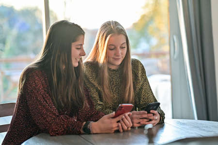 twin sisters are browsing on their mobile at home or are chatting with their friends on a social network with a mobile application