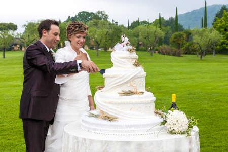 wedding cake outdoor Standard-Bild